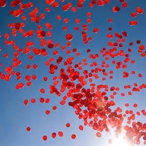 Balon süsleme, Dökme balon süsleme Ceyda Organizasyon ve Davet Tel: 532 120 58 98 Whats app: 532 577 16 15 info@ceydaorganizasyon.com www.ceydaorganizasyon.com Düğün , Nişan , Söz , Kokteyl , Açılış , Sünnet , Doğum günü , Süsleme Organizasyon