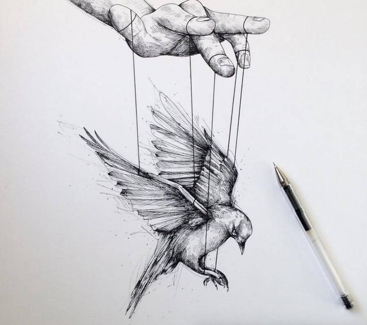 Ink Illustration: 25+ Best Ideas About Black Ink Art On Pinterest
