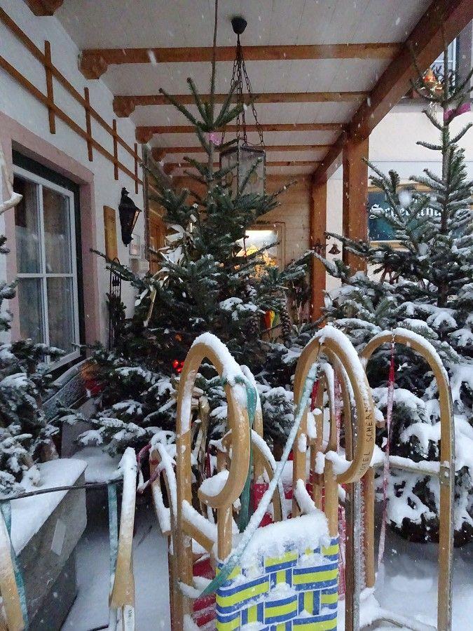 Winter on Lake Wolfgang - Hotel Schernthaner St. Gilgen am Wolfgangsee