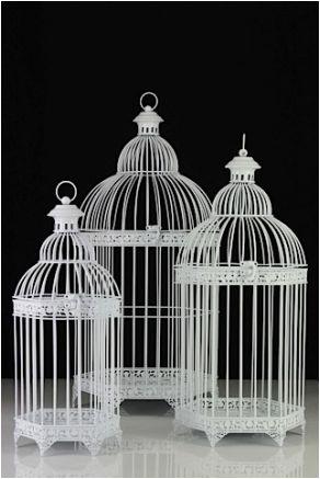 Trio of Birdcages