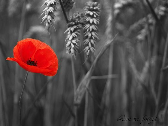 ANZAC Day – Lest We Forget