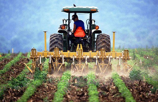 Τελευταία προθεσμία για τις αιτήσεις αγροτικών δικαιωμάτων