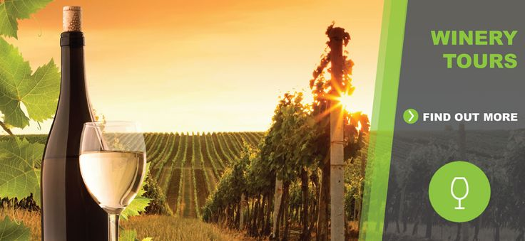 Dreamscape melbourne winery tour