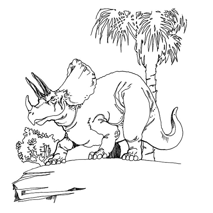 This Printable Coloring Page Of A Horned Triceratops Dinosaur Is All Ready For Some Creative Fun The Big Birthday Calendar Book Large Print Adult