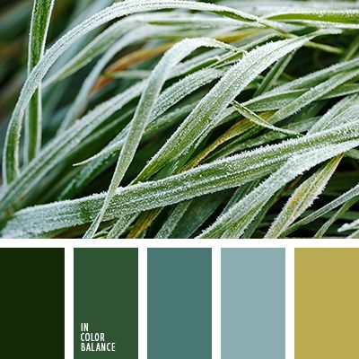 монохромная зеленая цветовая палитра, монохромная цветовая палитра, нефритовый, оттенки зеленого, подбор цвета, светло-голубой, сочетание цветов для декора интерьера, цвет базилика, цвет зеленого чая, цвет зеленого яблока, цветовое решение для дизайна