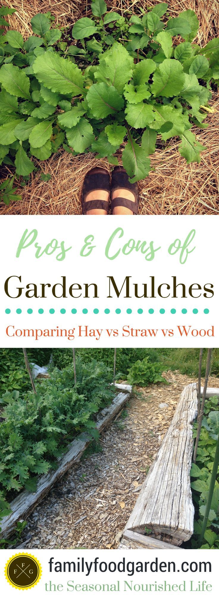 Garden mulches help you suppress weeds, build soil & reduce watering. Which garden mulches are better? Straw vs hay vs wood mulches for your garden beds