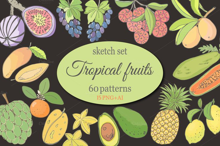 Sketch of tropical fruits. by Natali_art on @creativemarket