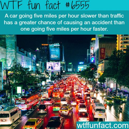 Why you shouldn't drive slower than traffic - WTF fun facts