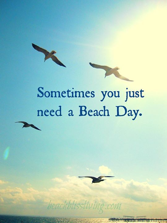 Sometimes you just need a Beach Day. Fill up that tank and head to one of our beautiful Gulf Beaches! You deserve it! See how you can further enjoy our Gulf Beaches at http://paradisenewsfl.com/events.html