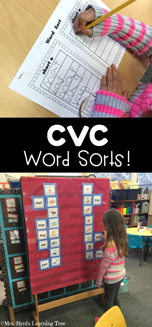 CVC word sorts in action with this great set of cvc picture cards...  I can't teach #kindergarten without them! (Mrs. Byrd's Learning Tree) $