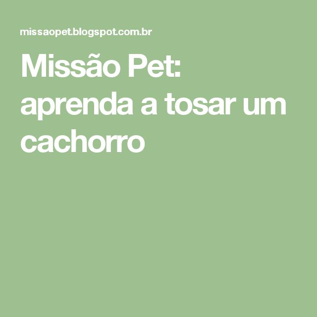 Missão Pet: aprenda a tosar um cachorro