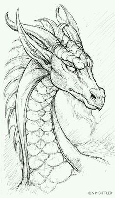 Dragon pencil drawing