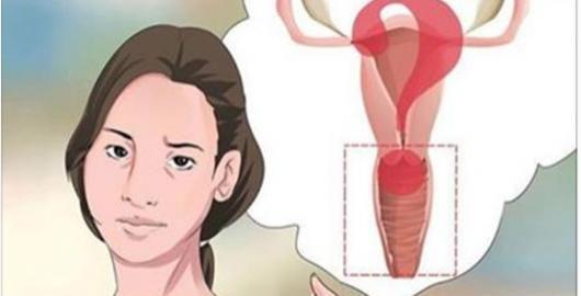 Acupressão é uma antiga técnica da medicina chinesa.Ela é ótima para tratar problemas causados pelo estresse, como as dores musculares.No entanto, há muitos outros benefícios, como:- Poder de cicatrização- Alívio de tensão
