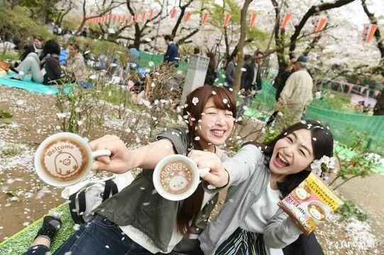 Catch the Sakura with Deco Latte #japankuru #japankuru #100tokyo #tokyo #cooljapan#takaratomy #kiddyland #harajuku #decolatte #latte#coffee #rilakkuma