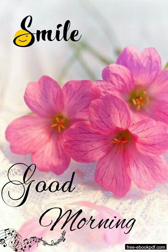 Emotional Quotes Good Morning Flowers Good Morning Images Flowers Good Morning Beautiful Pictures