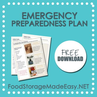 Emergency Preparedness plans (organizing a binder with vital family info, 72 hour kits, food storage, etc...)  Useful info for anything from power outages to evacuations.