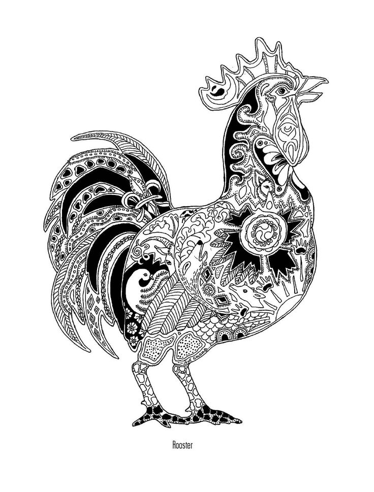 Rooster Coloring Coloring For Adults Pinterest