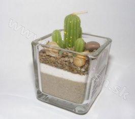 Originálny darček Kaktus - sviečka