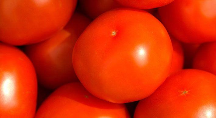 Bijna iedereen lust tomaten, althans in één van de vele vormen of toepassingen. Tomaten worden gebruikt in salades, sauzen, soepen, sappen en allerlei warme en koude gerechten. Tomaten hebben geen merkwaardige reputatie zoals sommige andere groenten. Tomaten zijn wat dat
