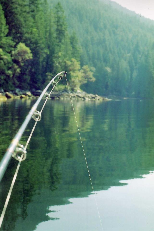 The Joy of Fishing