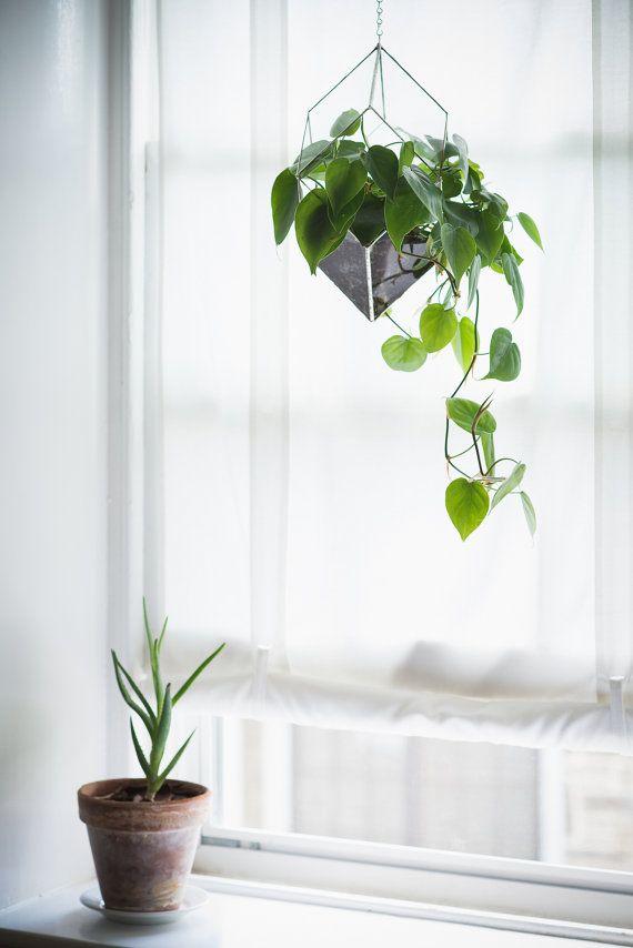 NEW Iridis Terrarium, large -- for air plant terrarium or small succulent -- stained glass -- terrarium supplies -- eco friendly