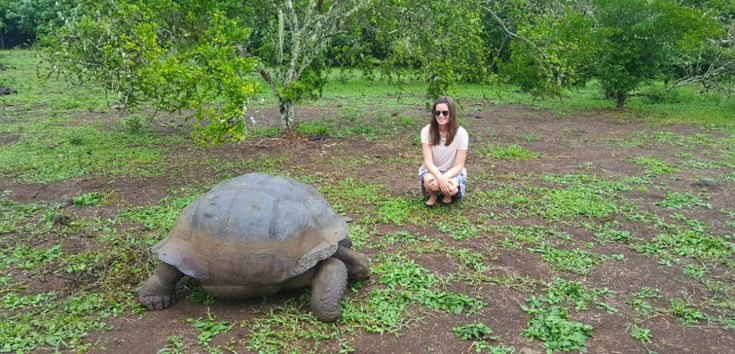 When visiting the Galápagos Islands, it's a must to go to the El Chato tortoise reserve on Santa Cruz Island. Wonder why? Find out on Secret Traveller.