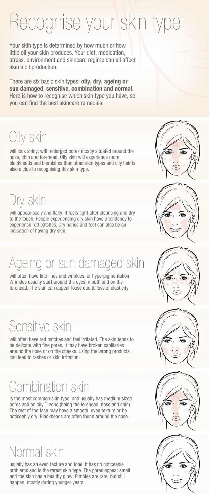 Great visual for a hand out when discussing skintypes