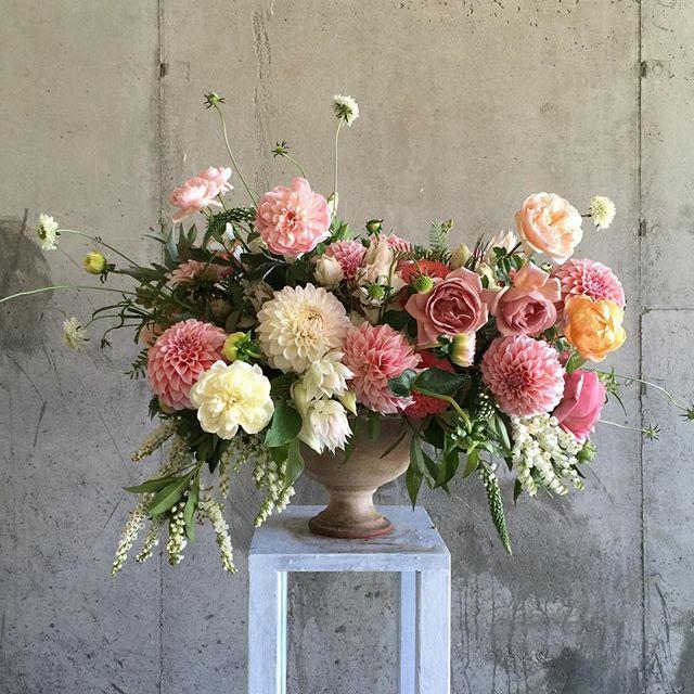 Dahlias + Roses = BFF