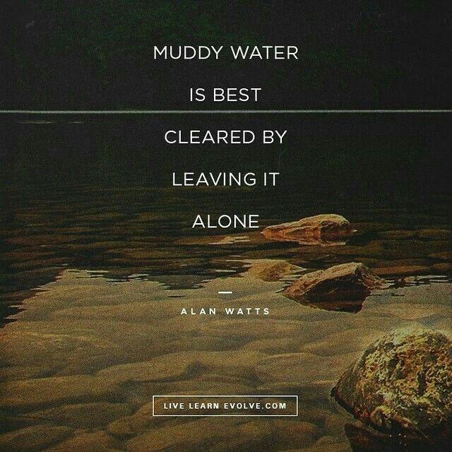 Muddy water is best cleared by leaving it alone. Alan Watts