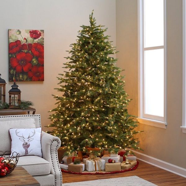 25 best ideas about real christmas tree on pinterest for Best looking christmas tree
