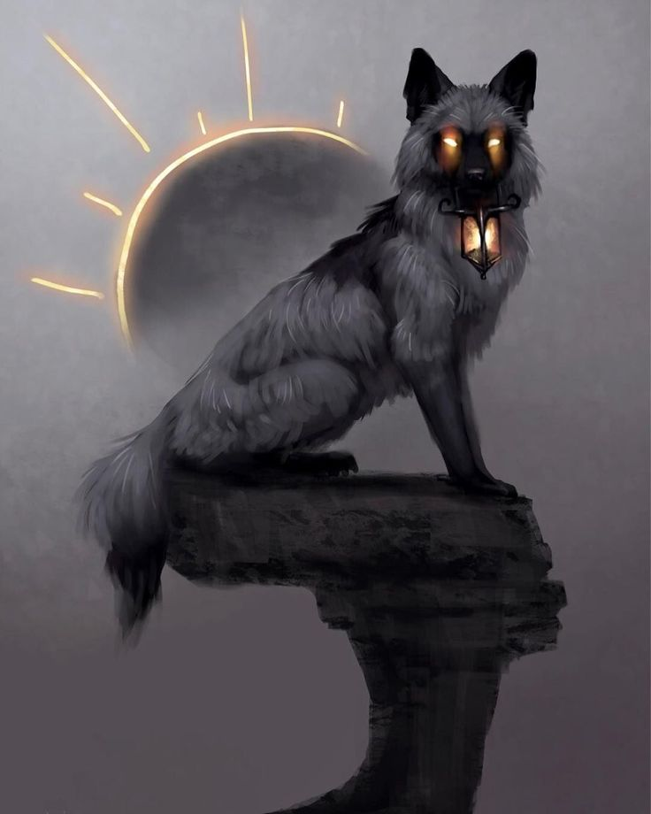 Fantasy Artsketch Fox Silverfox Art Digital Painting Sun Art