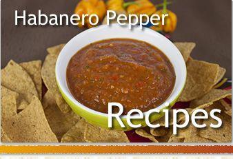 Habanero Recipes