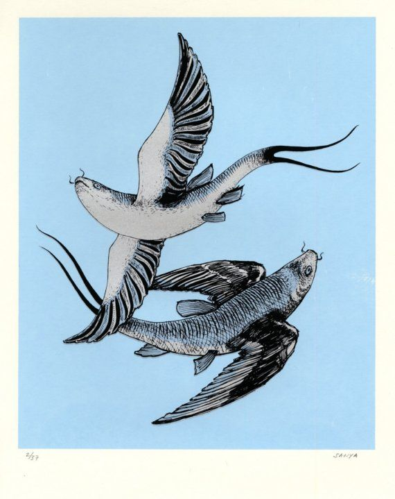 pisces flying fish.: Limited, Hands Prints, Pisces Flying, Flying Fish Art, Pisces Zodiac, Flyingfish Originals, Fish Screenprint, Zodiac Flyingfish, Birds Fish