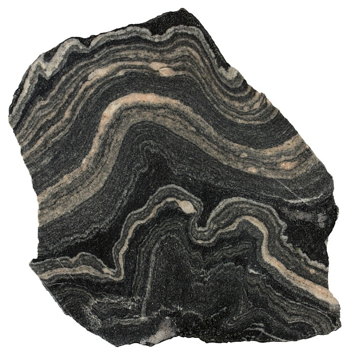 Gneiss - Metamorphic rocks This folded migmatitic gneiss from the Alps formed deep in the crust where rocks are plastic.