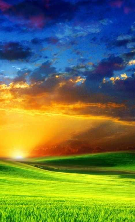 """""""BLISS"""" : What's a field without flowers? Something special, that's what, especially if the grassy expanse is observed in conjunction with our planet's varied and contrasting backdrop of sun, sky and atmosphere. It's soothing just to view the image; imagine what it would be like to actually be there?"""
