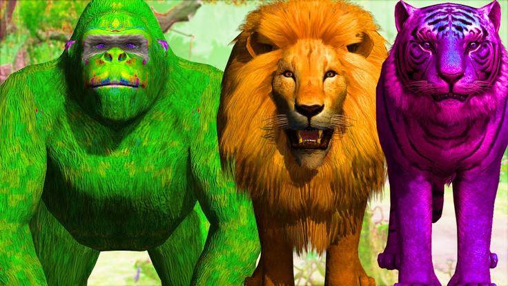çocuklar için goril vs aslan kreşleri | dinozorlar çocuklar için kısa fi...