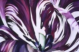Internationally acclaimed watercolor artist Birgit O'Connor is known for her Floral Watercolor Paintings. Click to view paintings available for sale!