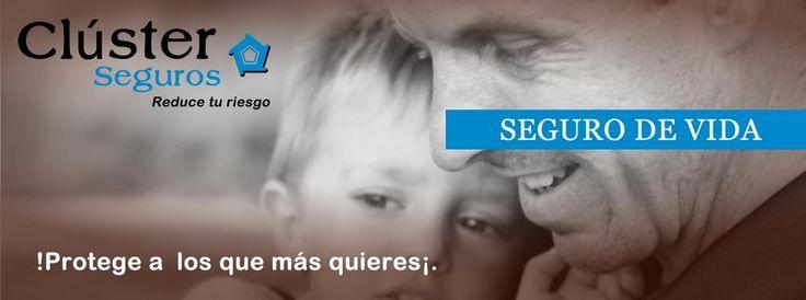 ClusterSeguros Agencia de Seguros