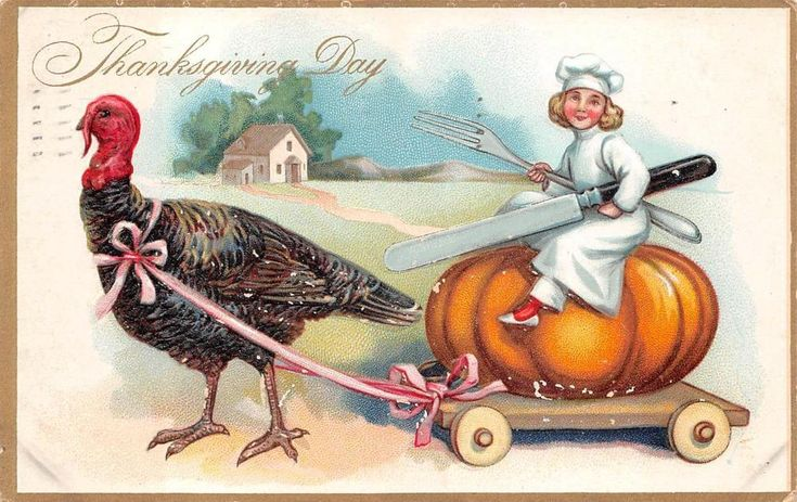 Details about THANKSGIVING HOLIDAY CHILD TURKEY COMIC EMBOSSED POSTCARD 1908 29