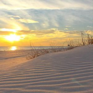 Destin Condos, Vacation Homes For Rent By Owner, Florida Panhandle Beachfront Rental Property