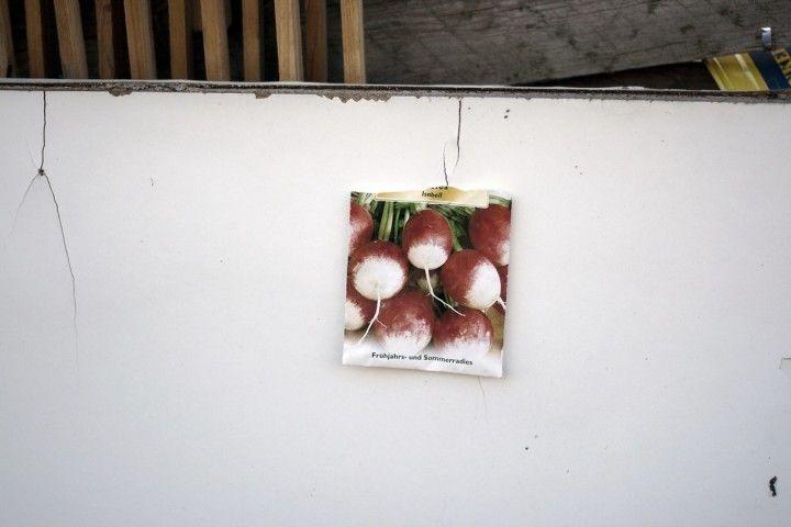 http://www.essentaste.com/en/copertina/il-tempo-del-raccolto/  Image Martina Della Valle for Essen A Taste magazine©