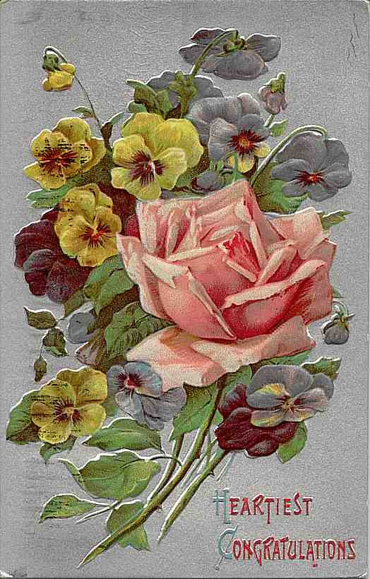 rose & pansies ~ vintage postcard