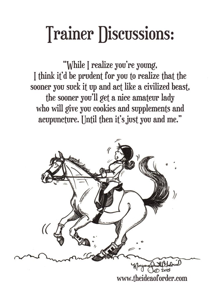 Training horses is a truly rewarding endeavor...except, of course, when it's not. But those sucky moments are all part of the challenge that helps us grow both as people and equestrians so I suppose we should embrace them (or at least resign ourselves to the reality of them. ;) )