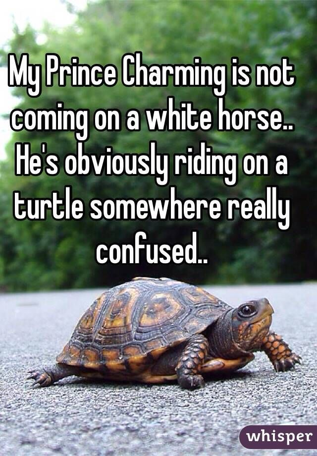 """My Prince Charming is not coming on a white horse.. He's obviously riding on a turtle somewhere really confused.. """