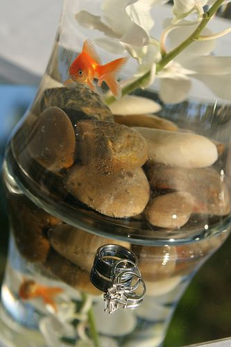 I love a goldfish centerpiece.  Two goldfish actually represent wealth and marriage! (Maybe just for the sweetheart table, though.)