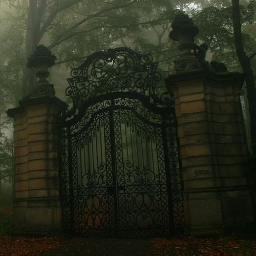 Gothic: Gothic Gate, Beautiful, Dark, Wrought Iron, By, Places, House, Iron Gates