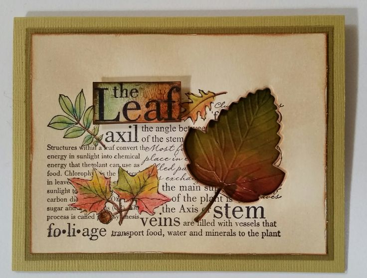 """""""The Leaf"""" 4809F by Stamp-it; """"Lovely Leaf"""" die 12839177 by Bo Bunny. Card by Susan of Art Attic Studio"""