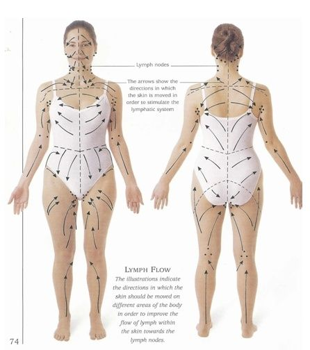Lymph drainage pattern for skin brushing- detox, drop weight, and cure cellulite naturally.