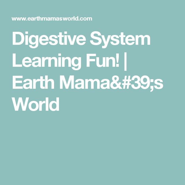 Digestive System Learning Fun! | Earth Mama's World