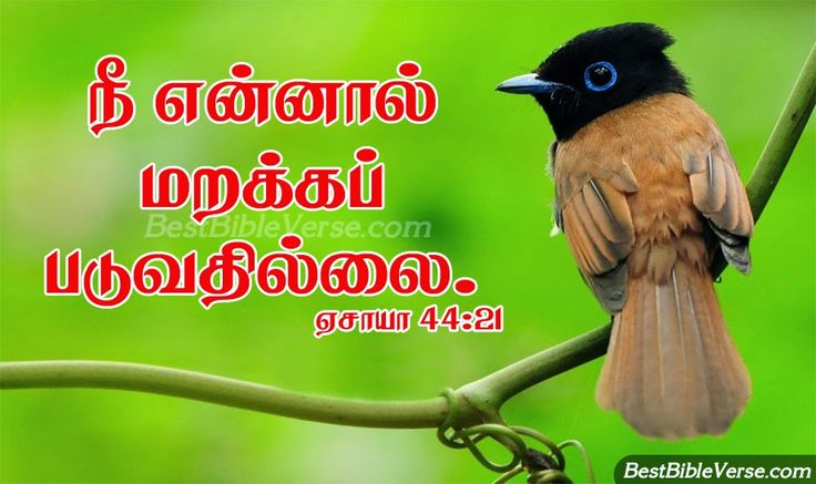 nice-tamil-latest-bible-wallpapers